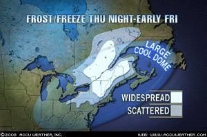 Much of NB is under a frost warning