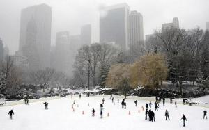 New York's Central Park under new snow