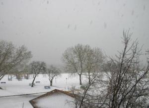 Snow in Gimli, Manitoba May 15.09