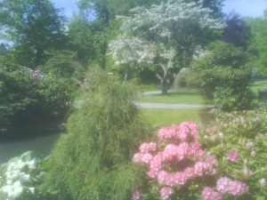 Spring at Halifax Public Gardens, NS