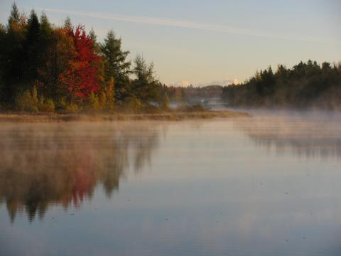 A frosty morning in Greater Moncton (courtesy TWN)