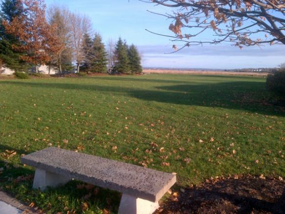 Riverfront Park in Moncton, 21 November 2012 (Dearing photo)