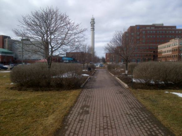 Downtown Moncton, 28 March 2013 (Dearing photo)