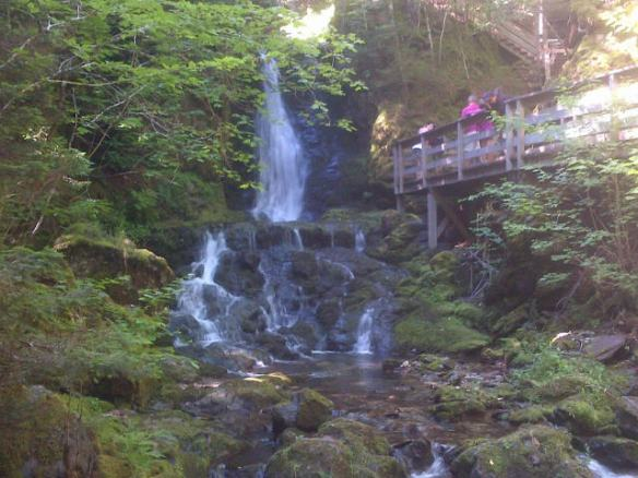 Dickson Falls, Fundy National Park, 21 July 2013 (Dearing)