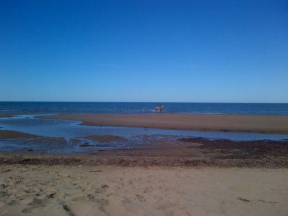Aboiteau Beach in Cap-Pele, NB, 29 Sept 2013 (Dearing)
