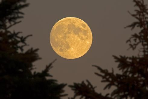 Harvest Moon in Halifax, NS, 18 Sept 2013 (The Weather Network)