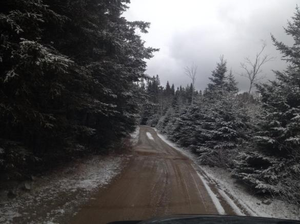 Snow in rural Kings County, NB, 12 Nov 2013 (Foster/Facebook)