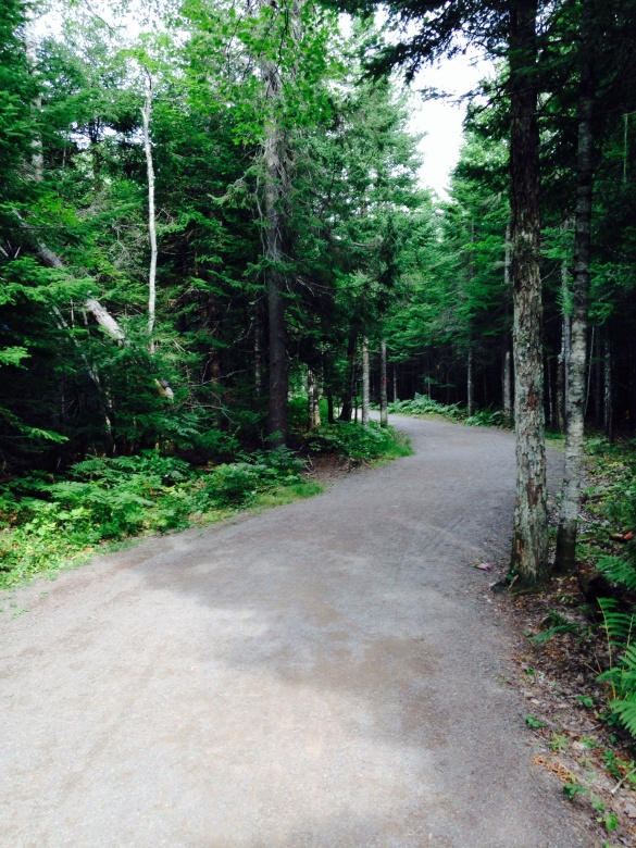Irishtown Park, Moncton, NB (Dearing)