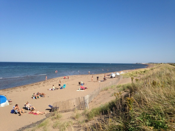 Sunny, warm fall day at Aboiteau Beach, Cap-Pele, NB, 29 Sept 2014 (Dearing)