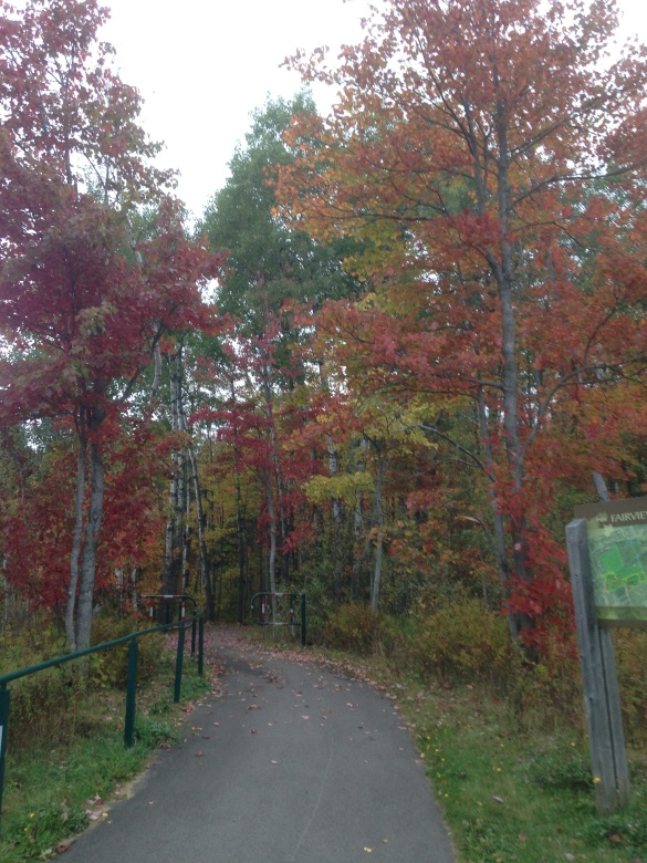 Fairview Knoll Park, Moncton, NB, 04 Oct 2014 (Dearing)