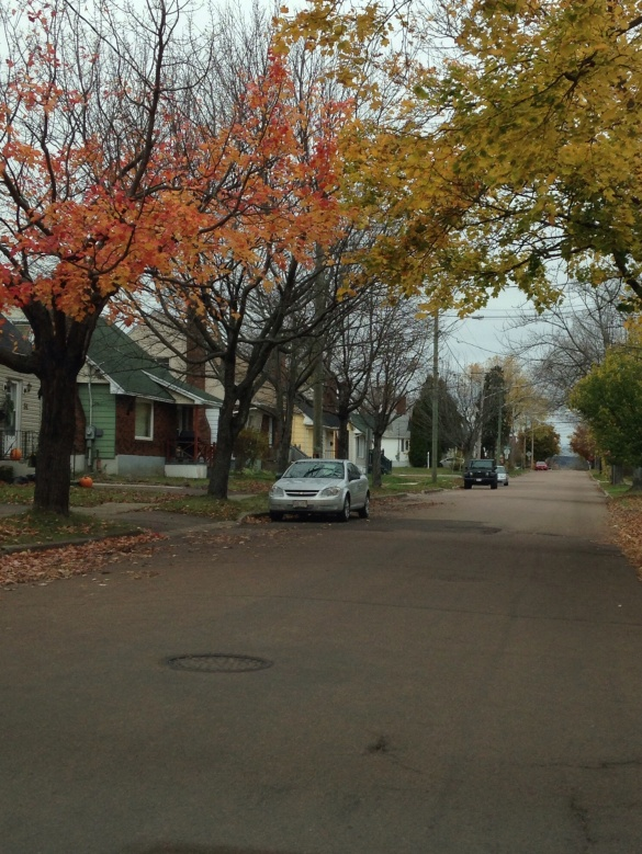 Some leaves hang on, northwest Moncton, 28 Oct 2014 (Dearing)