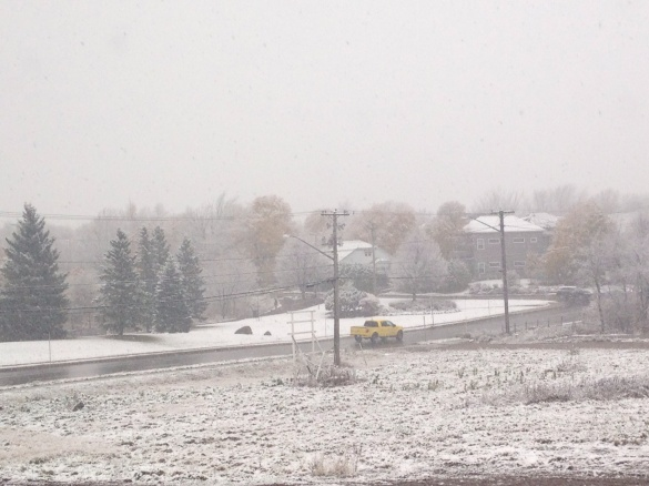 Snow falling in the Jones Lake area of Moncton, NB, 14 Nov 2014 (Dearing)