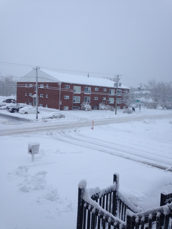 First snowstorm of the season, NE Moncton, NB, 27 Nov 2014 (Dearing)