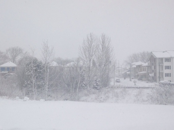 Snow falling in Moncton's west end, 09 January 2015 (Dearing)