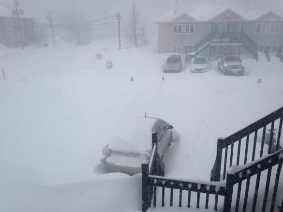 Blizzard rages in NE Moncton, 15 February 2015 (Dearing)