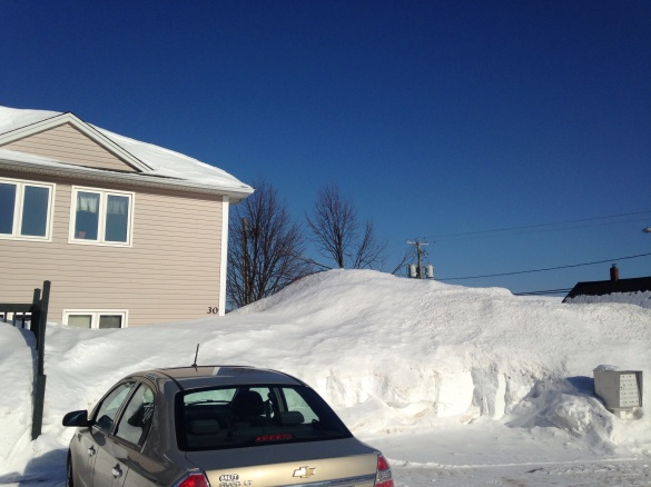 Clear but cold in Moncton, 24 February 2015 (Dearing)