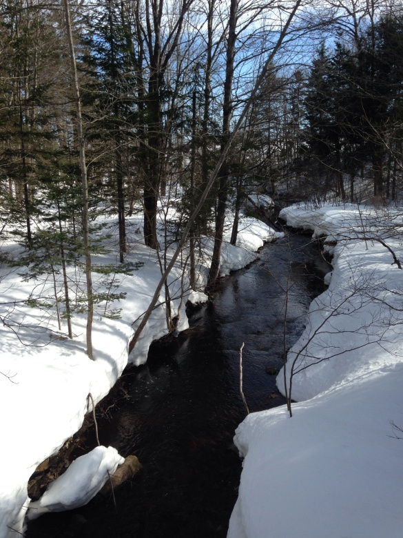 Ogilvie Brook, Irishtown Park, Moncton, NB, 29 March 2015 (Dearing)
