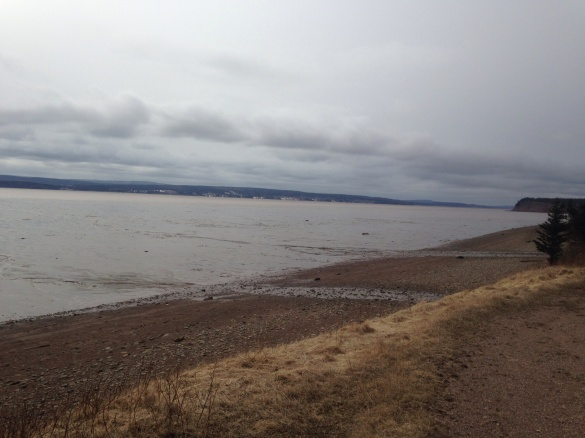 Looking at the Bay of Fundy from Dorchester, NB, 26 April 2015 (Dearing)