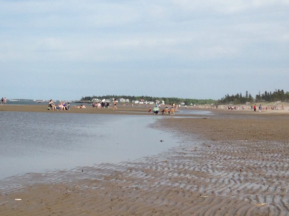 Parlee Beach, NB, 30 May 2015 (Dearing)