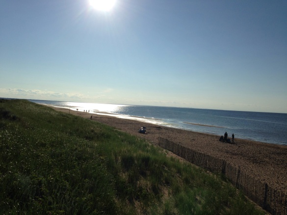 Aboiteau Beach, Cap-Pele, NB, 27 June 2015 (Dearing)