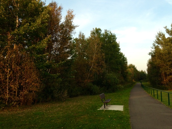 Fairview Knoll Park, Moncton, NB, 09 Sept 2015 (Dearing)