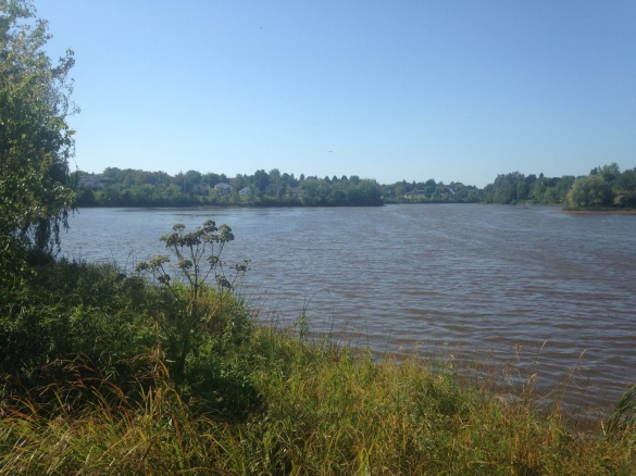 Jones Lake, Moncton, NB, 17 Sept 2015 (Dearing)