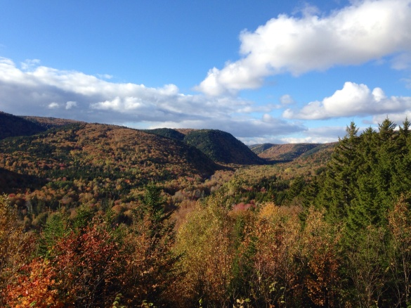 Crooked Creek Lookoff, Riverside-Albert, NB, 18 October 2015 (Dearing)