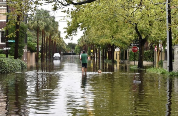 Flooding in downtown Charleston, South Carolina, USA, 04 Oct 2015 (AFP/Getty Images)