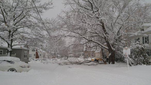 snow30nov