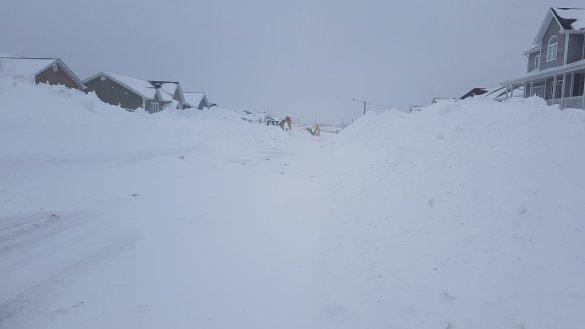 Gander snow Apr4-17
