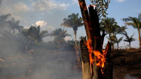 Brazil fires (Reuters Bruno Kelly)